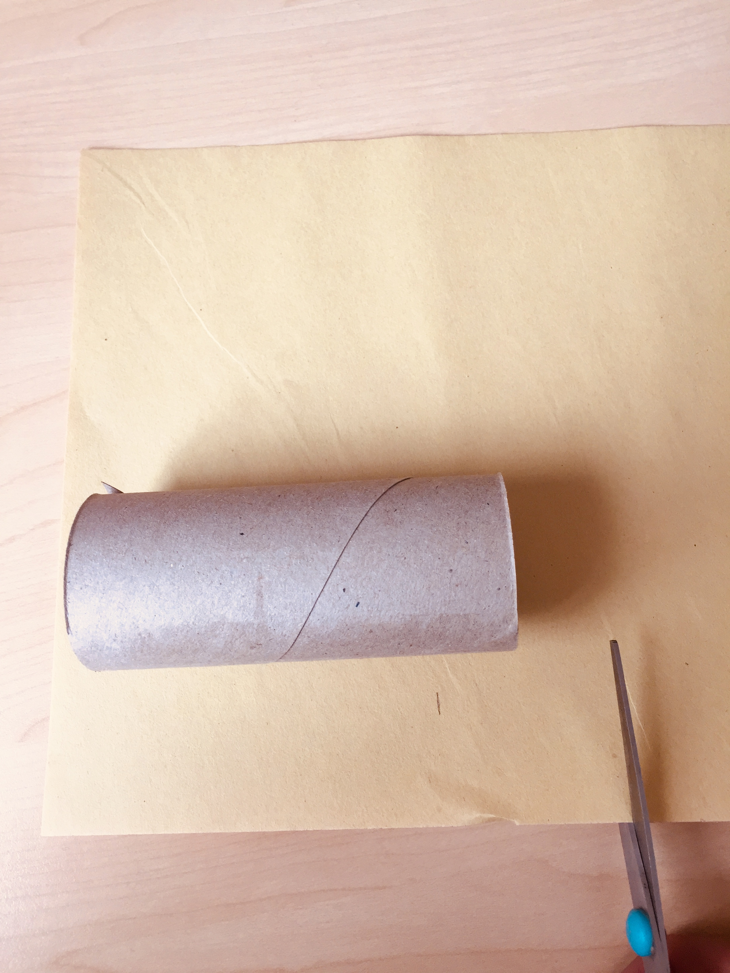 Toilet paper roll elephant craft step 1